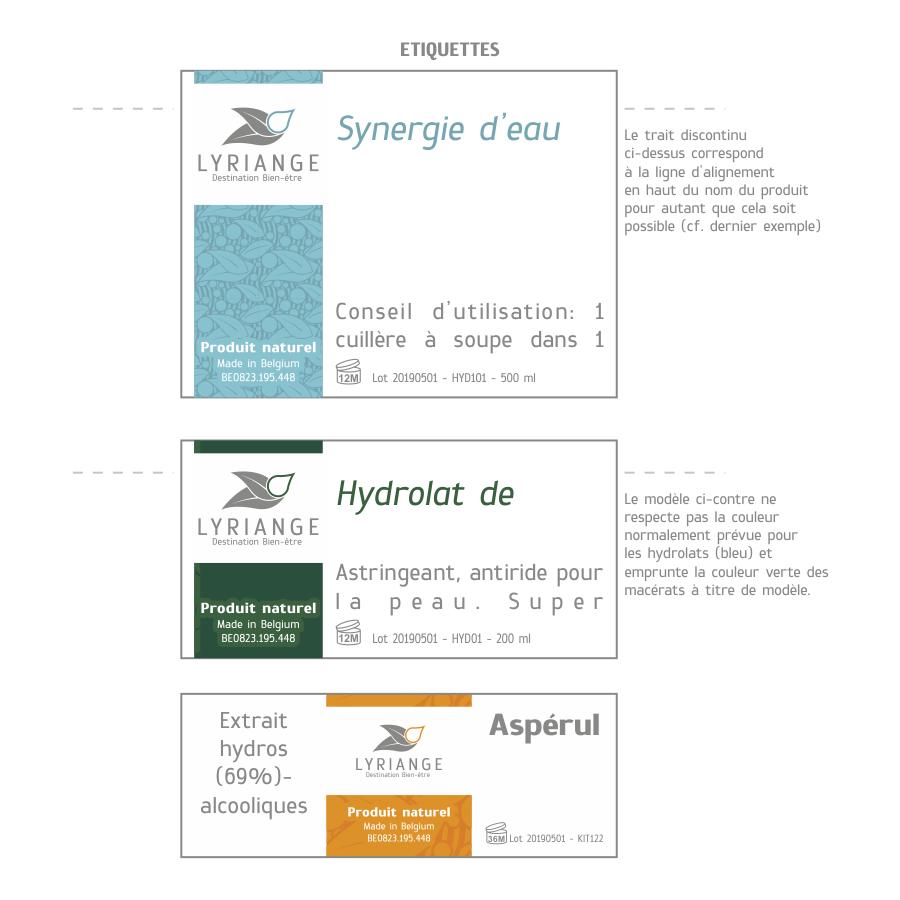 Création logo Lyriange: modèle